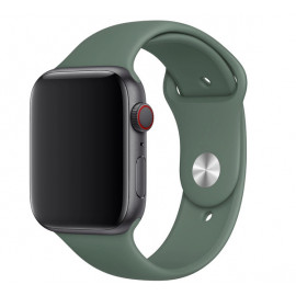 Apple Sport Band Apple Watch Sportarmband 42mm / 44mm Pine Green